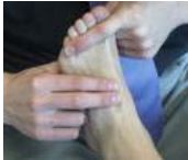 revision pulso area dorsal del pie